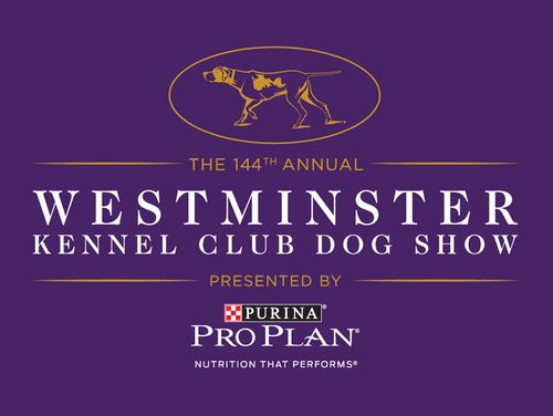Purina National Dog Show 2020.Westminster Kennel Club Dog Show 2020 Ticket Alerts